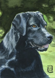 watercolor black labrador